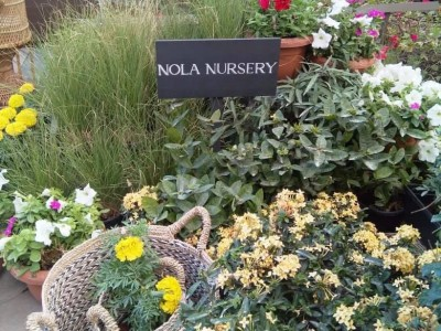 NOLA (Garden, Secret Garden & Nursery)